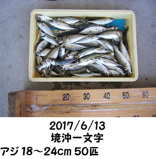 0000476278.jpg