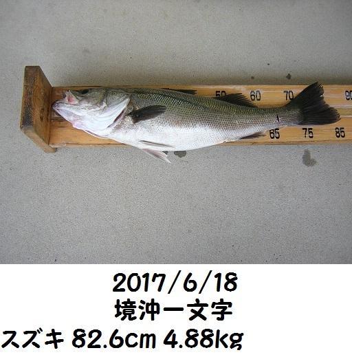 0000477612.jpg