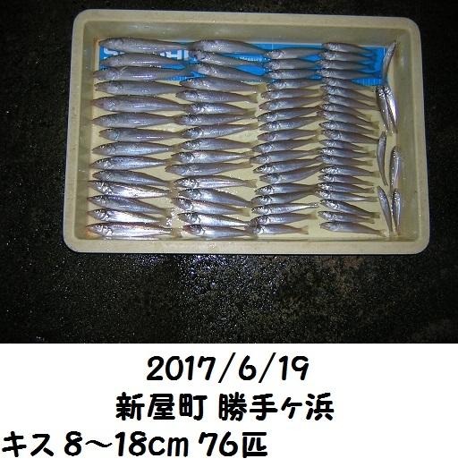 0000477615.jpg