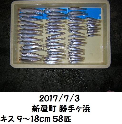 0000480681.jpg
