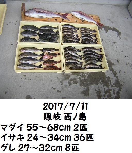 0000482431.jpg