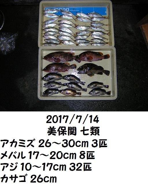 0000483321.jpg