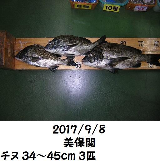 0000496519.jpg