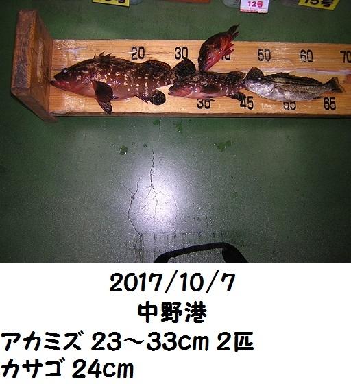 0000503999.jpg