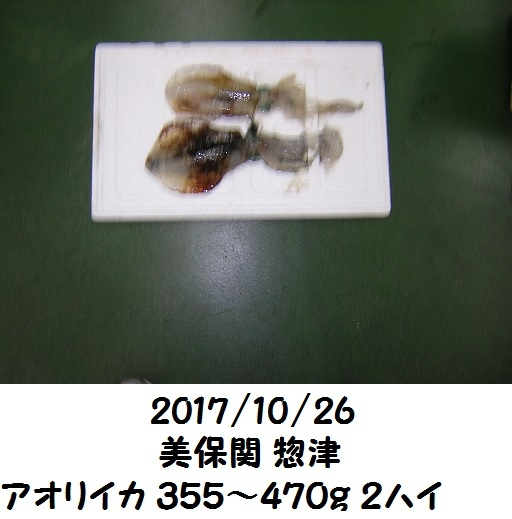 0000507394.jpg