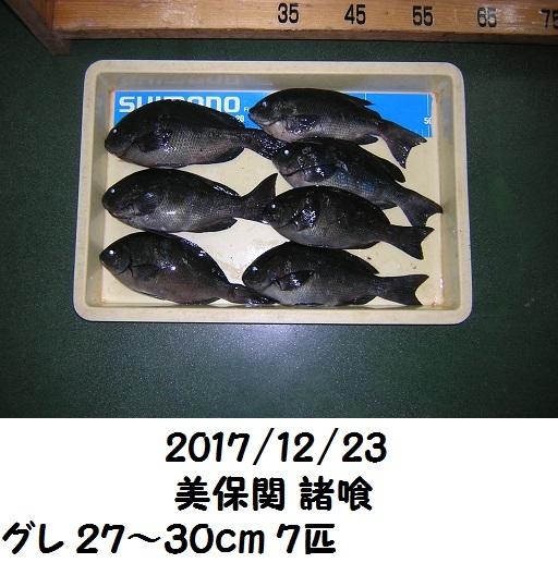 0000520569.jpg