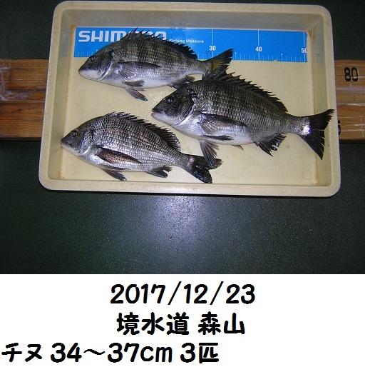 0000520571.jpg