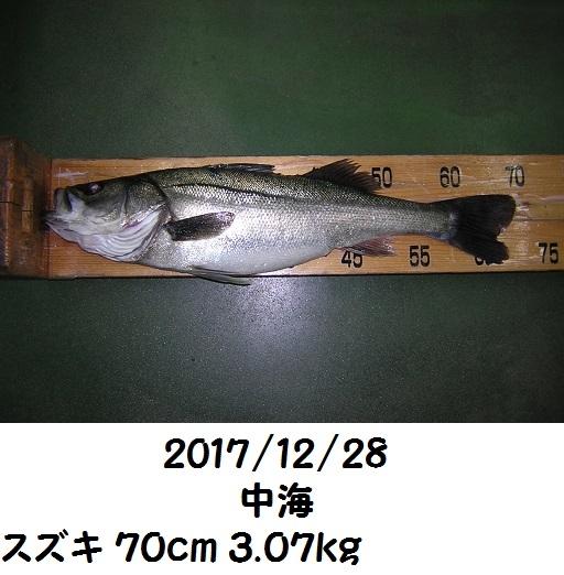 0000521724.jpg