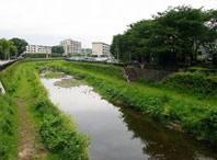 野川 - 小金橋から世田谷方向へ