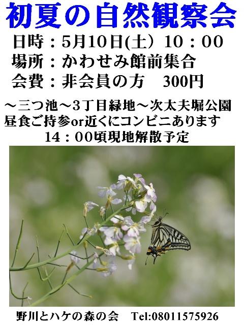 2008_05l