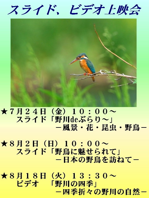 2009_07_08l