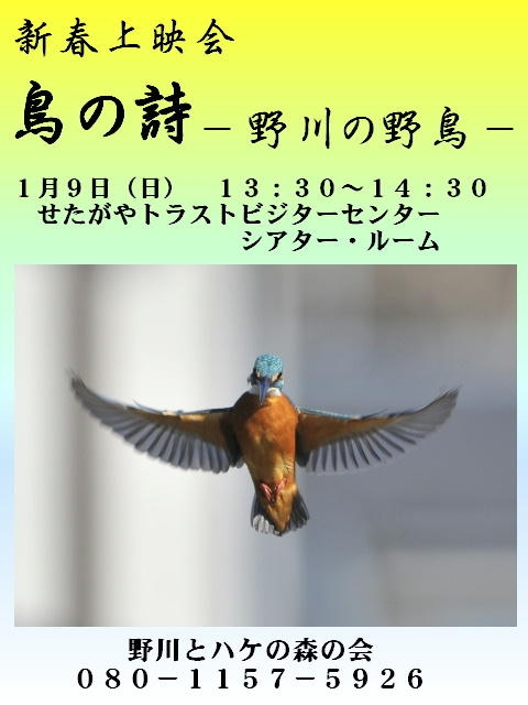 2011_01l