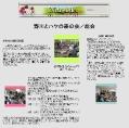 2007年5月13日 会報39号