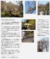 2011年3月5日 会報91号