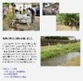 2011年9月17日 会報96号