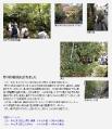 2011年11月20日 会報97号