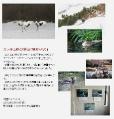 2012年1月21日 会報100号