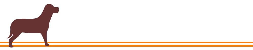 埼玉県川口市新井宿駅近隣地域の遺品整理・遺品処分はご相談、お見積りも無料です!