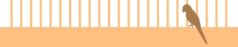 動物5_オレンジ