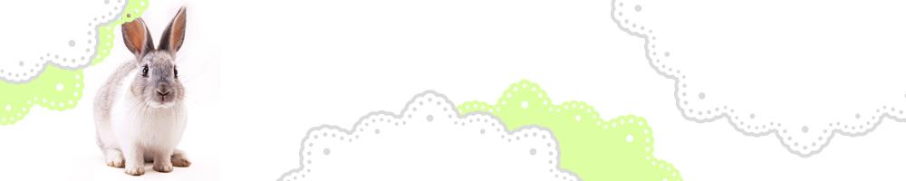 動物7_グリーン