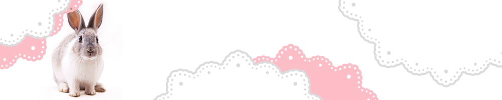 動物7_ピンク