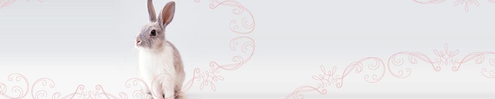 動物13_ピンク